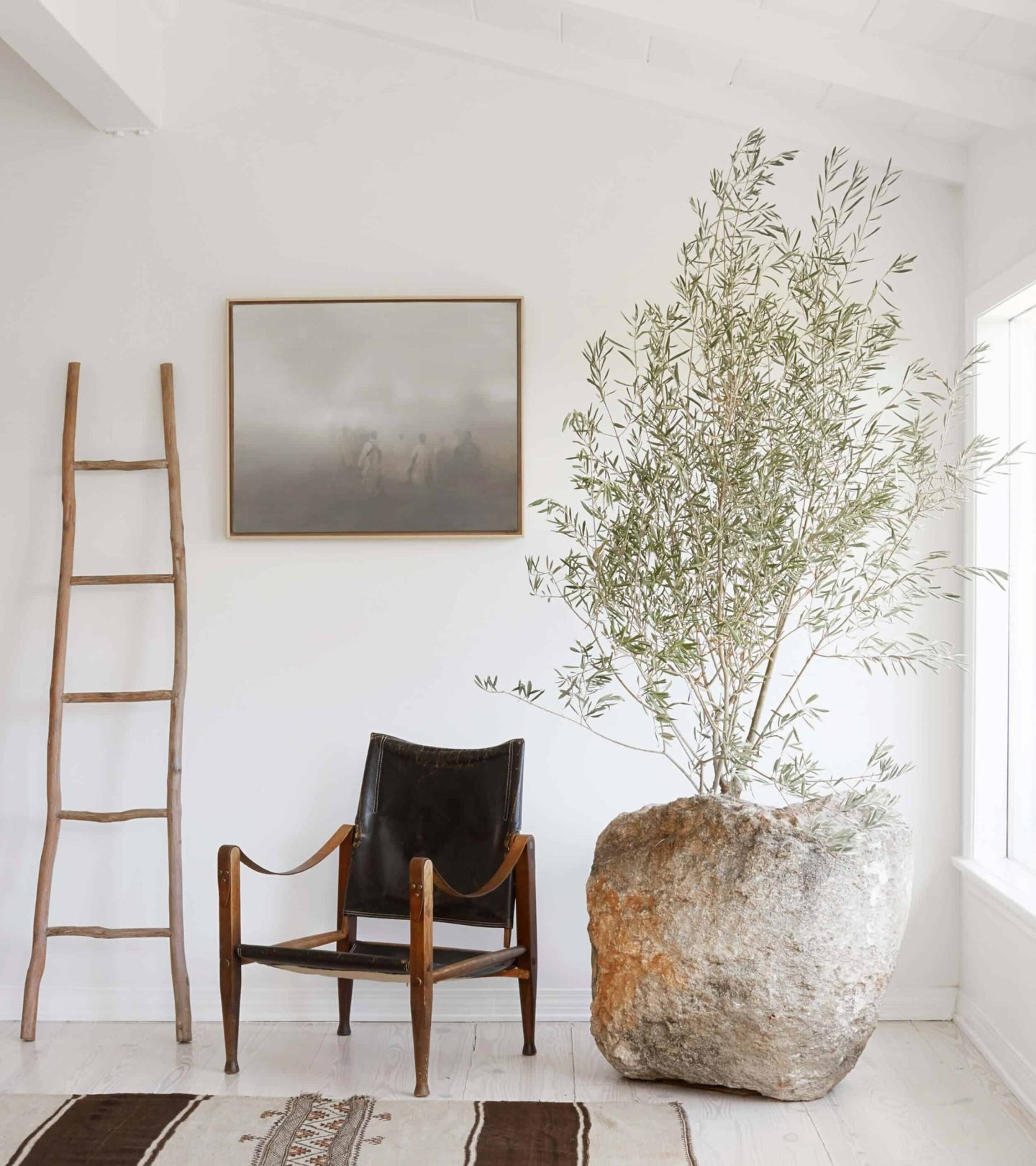 Design Tips | Pretty, Hard to Kill, Air Purifying House Plants