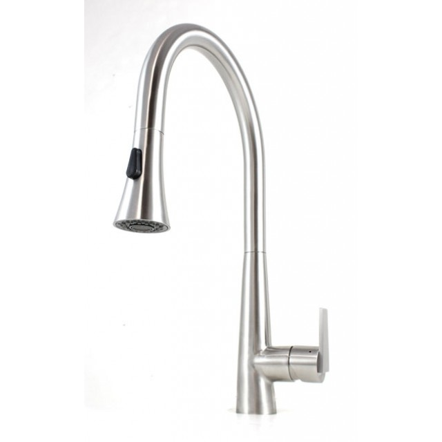 pull out spray kitchen faucet cabinet grades ariel eclipse design functions stainless steel sprayer lead free mixer