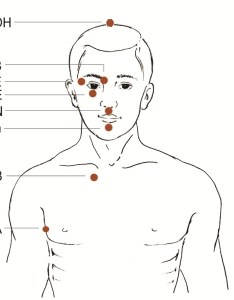 Written aids to locating the eft basic recipe tapping points also how do basics part  for rh emofree