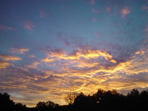 One of those gorgeous sunrises from my window.