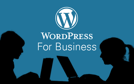 wordpress more than just a blogging platform