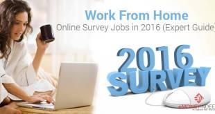Online-Survey-Jobs-2016