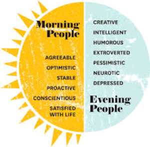 Ways to Make Your Morning More Productive