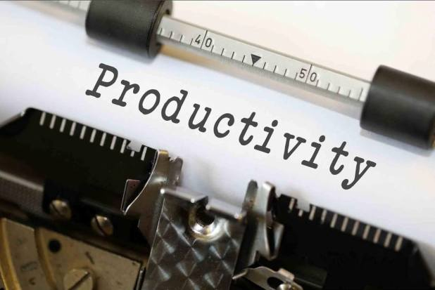 A Small Business Approach to Employee Productivity
