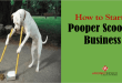 How to Start a Pooper Scooper Business