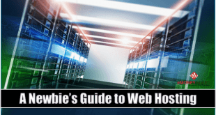 Newbies Guide to Web Hosting