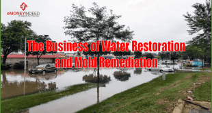 Business-of-Water-Restoration-and-Mold-Remediation