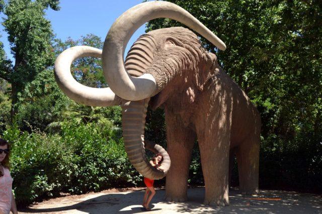 Zoo di Barcellona