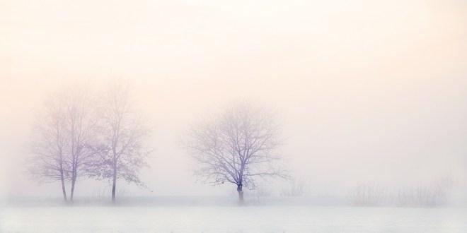 winter-landscape-2571788_960_720