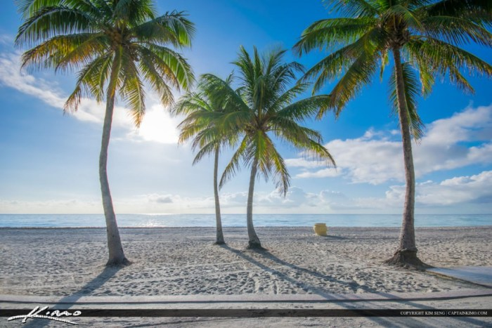 A beautiful day at the beach in Hollywood Florida with coconut trees. Image slightly tone mapped using Photomatix Pro software.