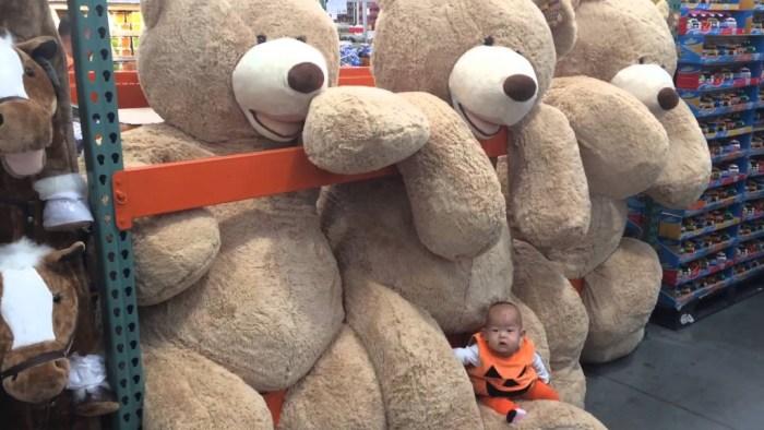 Ursos-de-Pelúcia-Gigantes14