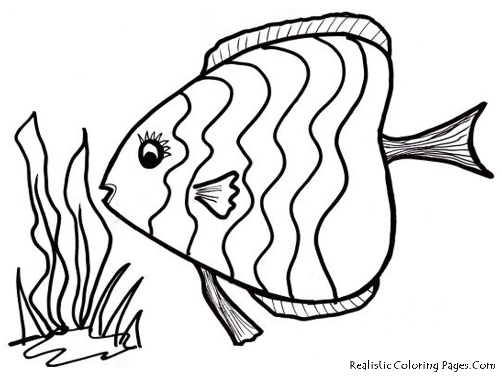 Draw-Color-Pages-17-For-Your-Free-Colouring-Pages-with-Color-Pages
