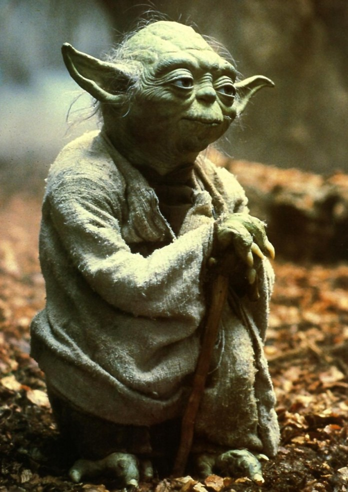 Yoda (1)