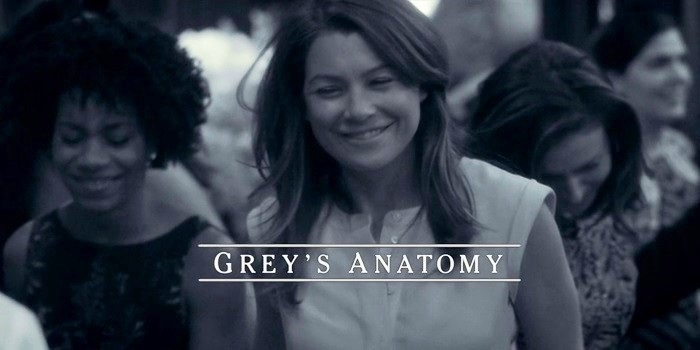greys-anatomy-11x24