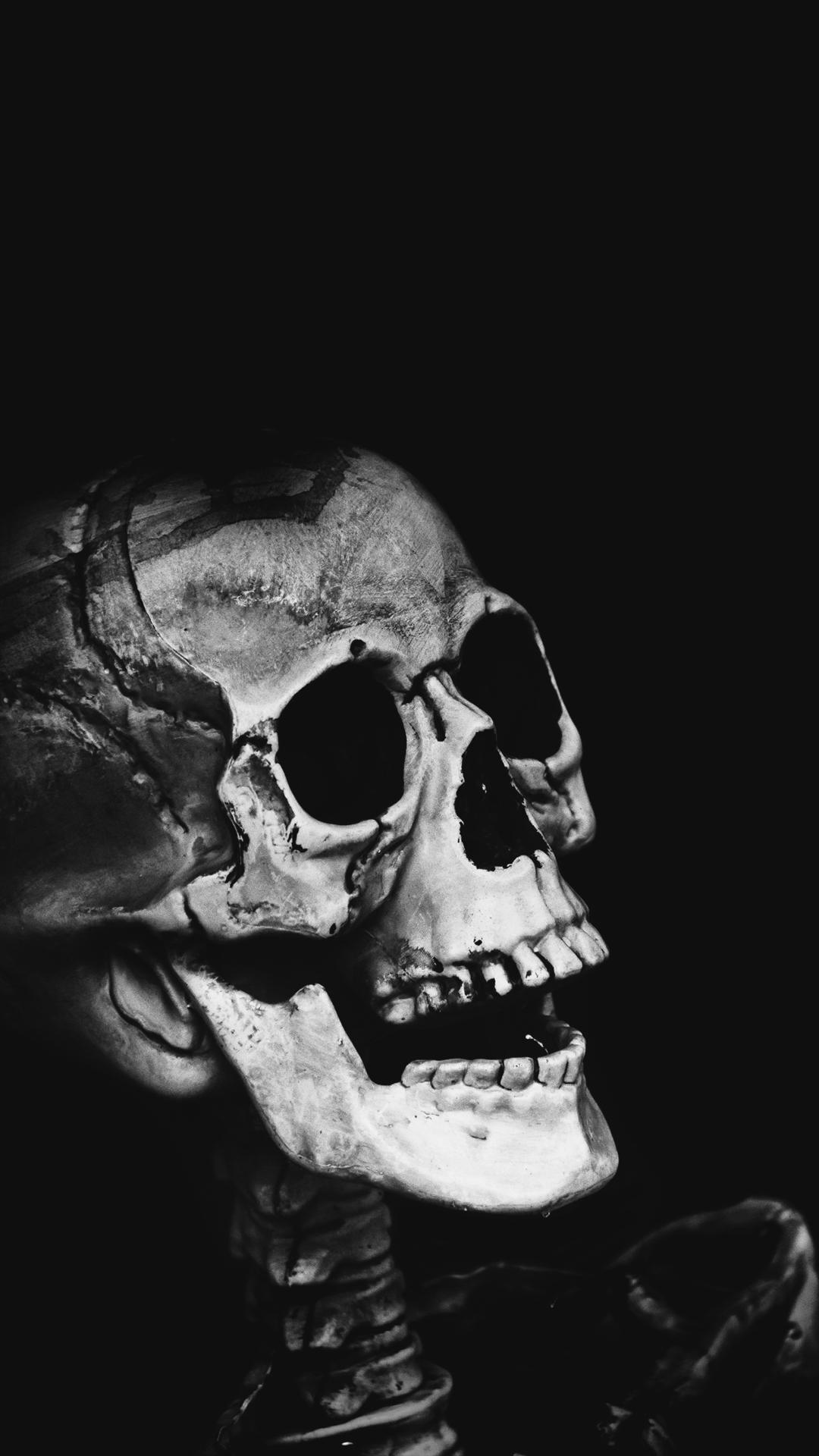 classic-skull-4448