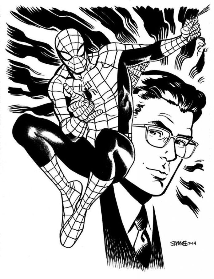 e4a476f5cfa7e0ffa8a5252abae0be51--spiderman-spiderman-marvel-dc-comics