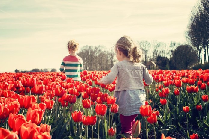 girls-children-tulips-netherlands