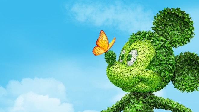 mickey_mouse_grass_flowers_butterfly_toon_68139_1920x1080
