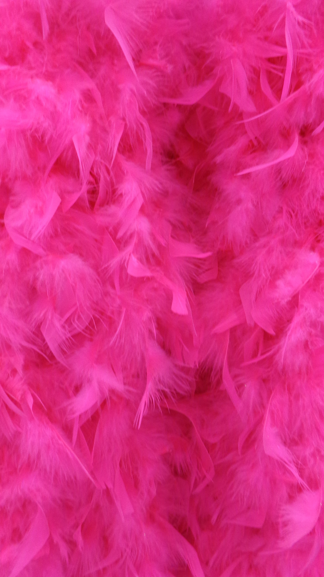 pink-feathers-4471
