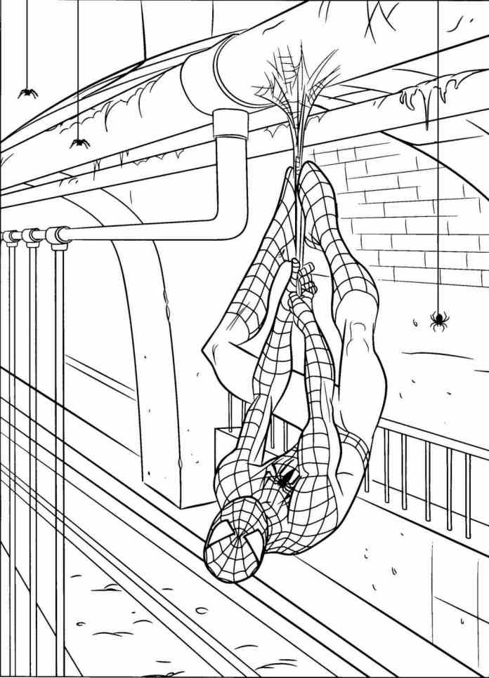 spiderman-Spiderman-Coloring-Pages-coloring-pages-pinterest-spider-man-popular-with-spider-Spiderman-Coloring-Pages-man-coloring-pages-spiderman-popular-with-printable