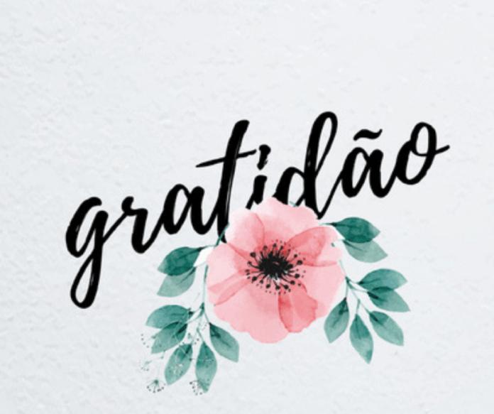 Frases de Gratidão, Mensagens em Texto e Imagens