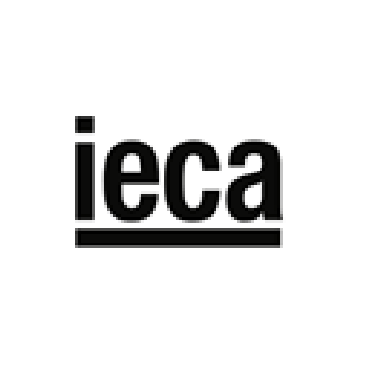 IECA Coaching empresas en Madrid