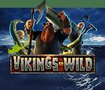 Vikings Go Wild game thumbnail