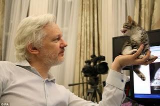 Is Julian Assange Dead Or Alive?