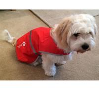 Personalised Hi-vis dogs vest | Custom Embroidered
