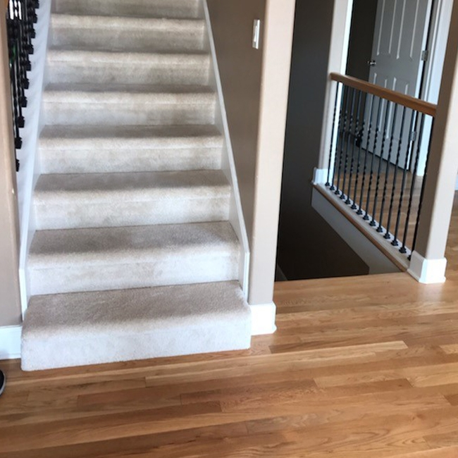 Portland Home Gets The Best Of Both Worlds With Plush Carpet And   Best Carpet For Stairs 2019   Stair Runners   Stair Railing   Berber Carpet   Wall Carpet   Carpet Tiles