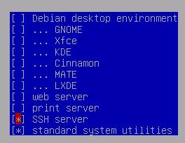 debian server install - 8