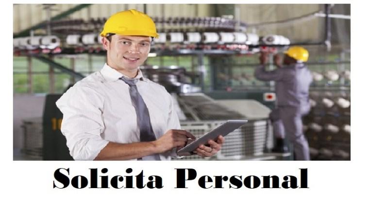 empleo en domex vacante disponible