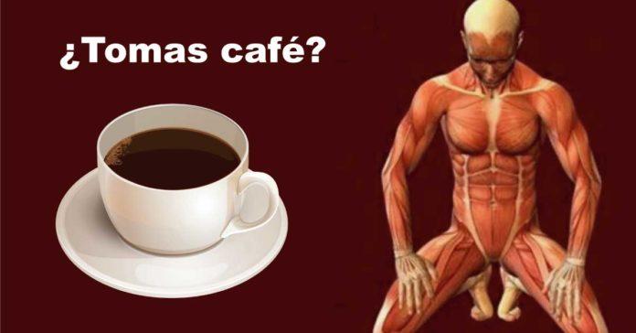 Todas las personas deberían saber lo que pasa a tu cuerpo cuando tomas café todos los días