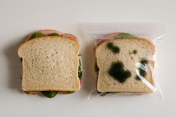 Les sacs antivols à sandwich