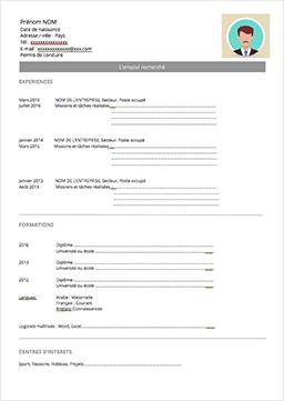 Modèles de CV et exemples de CV gratuits
