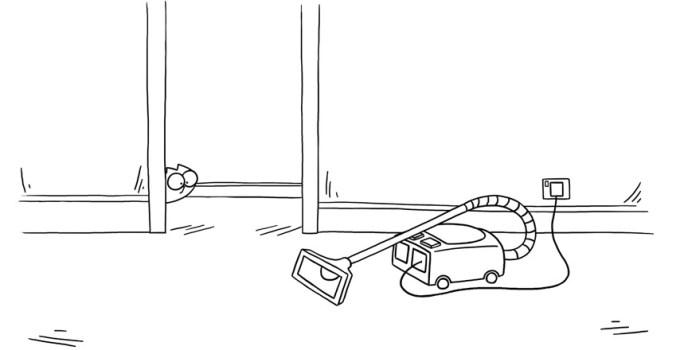 Il gatto e gli elettrodomestici di casa: un rapporto non sempre amichevole!