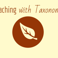 ELL strategies differentiation with taxonomy