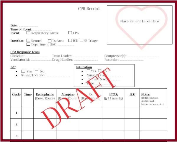 CPA Recording Sheet