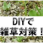 DIYで雑草対策