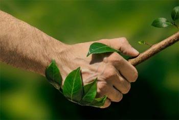Certificados medioambientales