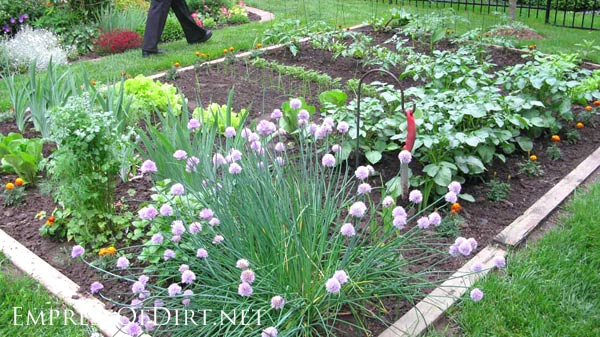 20 Ideas For Your Home Veggie Garden Empress Of Dirt