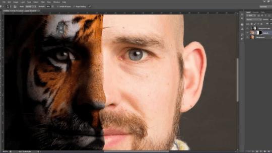 Photoshop Güzelleştirme Rötuş Eğitimi