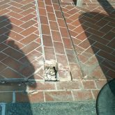 Buckled Pavers in Plaza Deck