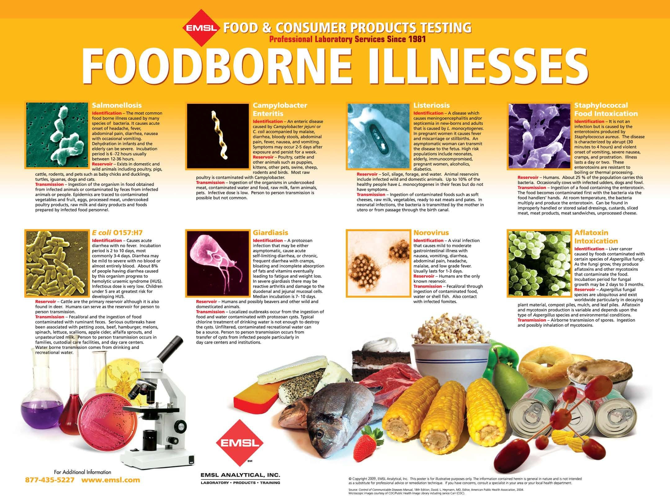 Free Foodborne Illnesses Poster