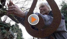 Screen_Harenerin verwandelt ihren Garten in ein Weihnachtswunder