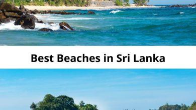 Photo of Best Beaches in Sri Lanka