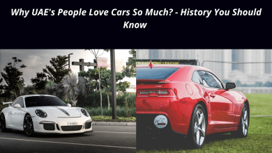 Photo of Why are UAE's People Love Cars So Much? – History You Should Know