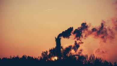 Photo of Causes of environmental pollution and possible prevention methods