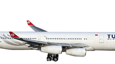 Photo of WON LOYALTY WITH TURKISH AIRLINES CUSTOMER SERVICE
