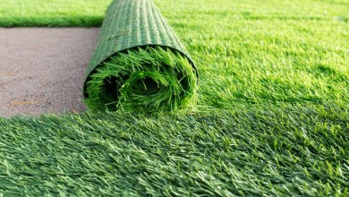 Photo of Fresh new ideas of using synthetic grass